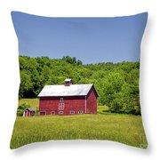 Wildflowers Barn Throw Pillow
