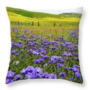 Wildflowers Carrizo Plain Throw Pillow