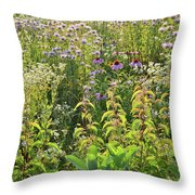 Wildflowers Glow In Setting Sun Light Throw Pillow