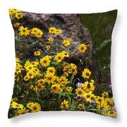 Wildflowers Honoring Mary Jabens Throw Pillow