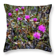 Wildflowers In Alaska Throw Pillow