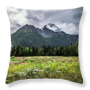 Wildflowers In Palmer Throw Pillow