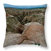 Wildflowers In The Badlands Throw Pillow
