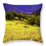 Wildflowers In The San Emigdio Mountains Throw Pillow