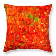 Wildflowers In The Smokies Throw Pillow