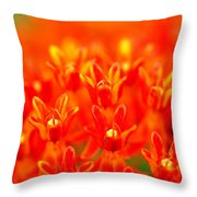 Wildflowers In The Smokies II Throw Pillow