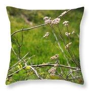 Wildflowers Marblehead Massachusetts Throw Pillow