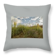 Wildflowers Of Chaco Throw Pillow