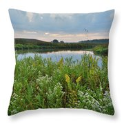 Wildflowers Of Hackmatack National Wildlife Refuge Throw Pillow