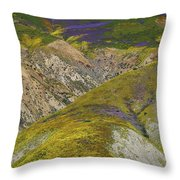 Wildflowers Up The Hills Of Temblor Range At Carrizo Plain National Monument Throw Pillow