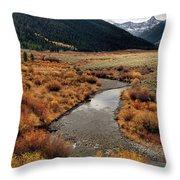 Wildhorse Creek Throw Pillow
