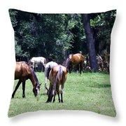 Wildhorses Of Cumberland Throw Pillow