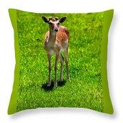 Wildlife 2 Throw Pillow