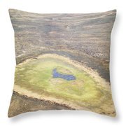 Wildlife Gathers In The Flooded Pans Throw Pillow