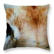 Wildlife Lion 10 Throw Pillow