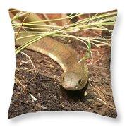 Wildlife6 Throw Pillow