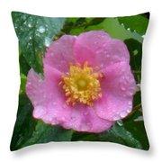 Wild's Pink Rose Throw Pillow