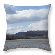 Wildwood Park In Harrisburg, Pa Throw Pillow