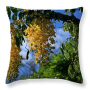 Wilhelmina Tenney Rainbow Shower Tree Makawao Maui Flowering Trees Of Hawaii Throw Pillow
