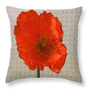 Will The Poppy In The Back Please Stand Up Throw Pillow