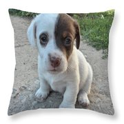 Will You Be My Friend Throw Pillow