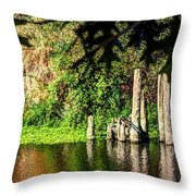 Willamette River Reflections 3783 Throw Pillow
