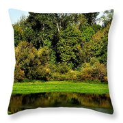 Willamette River Reflections 3813 Throw Pillow
