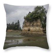 Willapa Bay Shoreline Throw Pillow