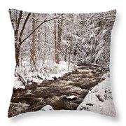 Willard Brook 2 Throw Pillow