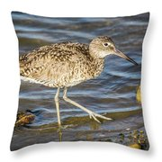 Willet Feeding In The Marsh 1 Throw Pillow