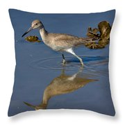 Willet Searching For Food In An Oyster Bed Throw Pillow