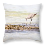 Willet Set 3 Of 4 By Darrell Hutto Throw Pillow