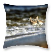 Willets In The Waves Throw Pillow