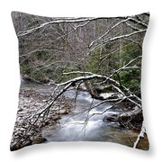 Williams River In Winter Throw Pillow