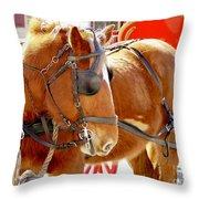 Williamsburg Carriage Horse Throw Pillow