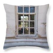 Williamsburg Window 86 Throw Pillow