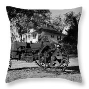 Willig Collection 3 Throw Pillow