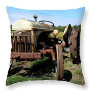 Willig Collection 4 Throw Pillow