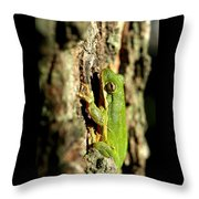 Willing Subject Throw Pillow