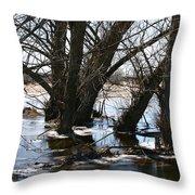 Willow Brook Throw Pillow