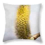 Willow Catkin - Silver World Throw Pillow