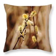 Willow Catkins Throw Pillow