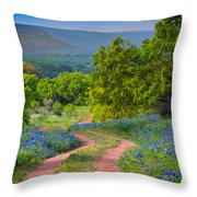 Willow City Road Throw Pillow