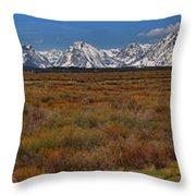 Willow Flats At Grand Teton Panorama Throw Pillow