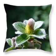Willow Flower Throw Pillow