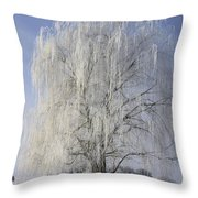 Willow In Ice Throw Pillow