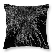 Willow Noir Throw Pillow