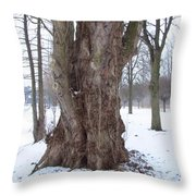 Willow Over Pond Throw Pillow
