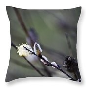 Willow Stages Throw Pillow