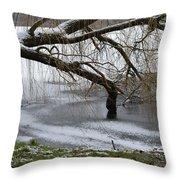 Willow Tree On The Frozen Lake Detail Throw Pillow